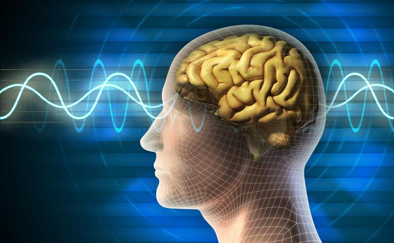 Binaural Beats Flowing in the brain
